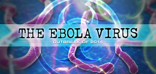 outbreak essay